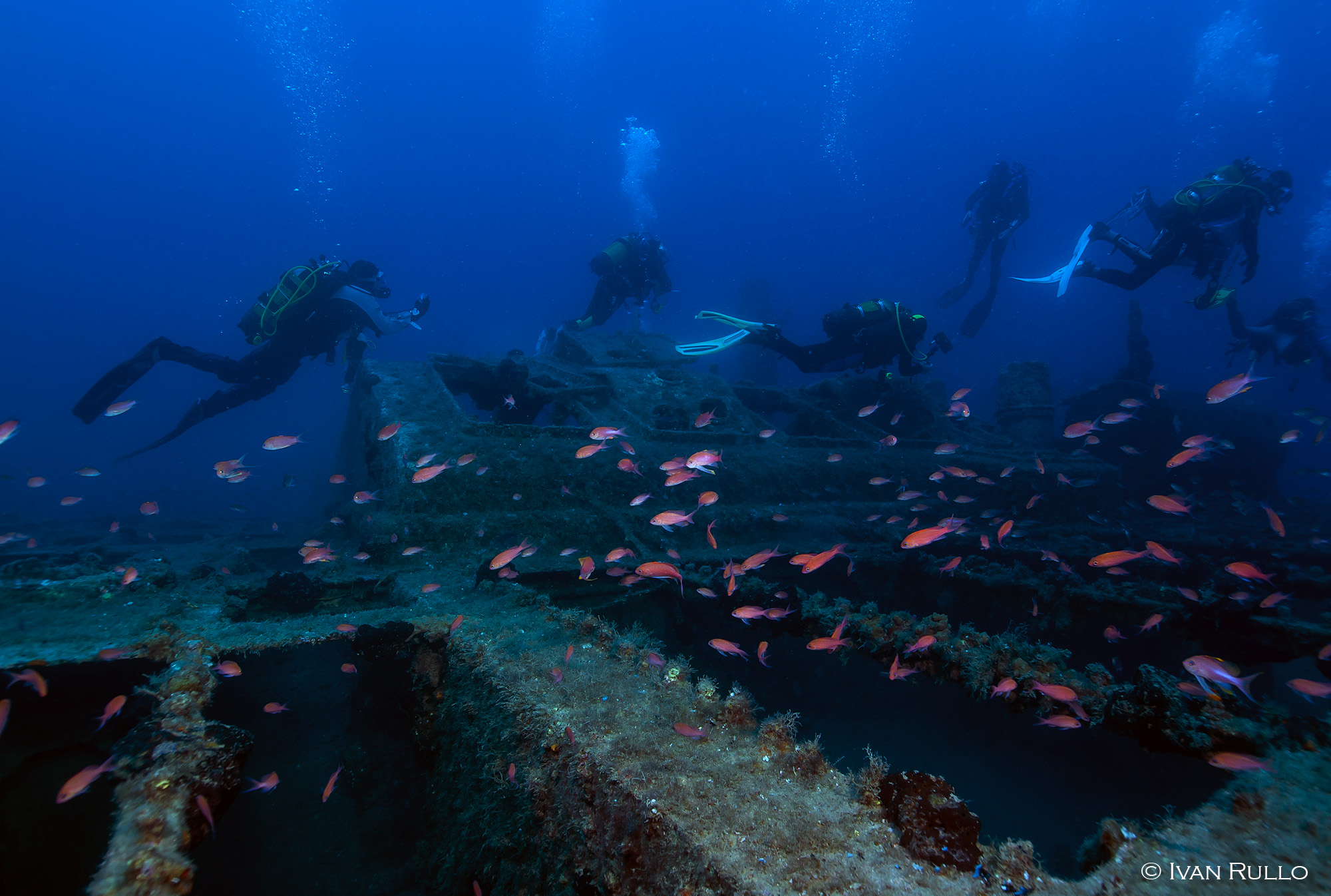 L IR8451 Relitto Laura Cosulich