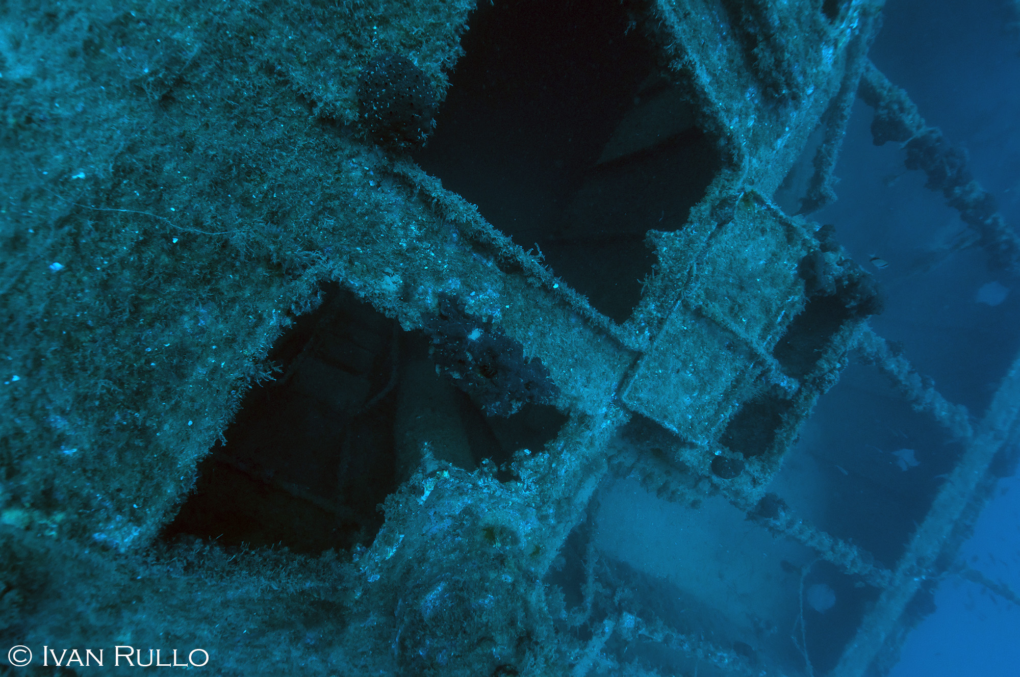 R IR8491 Relitto Laura Cosulich