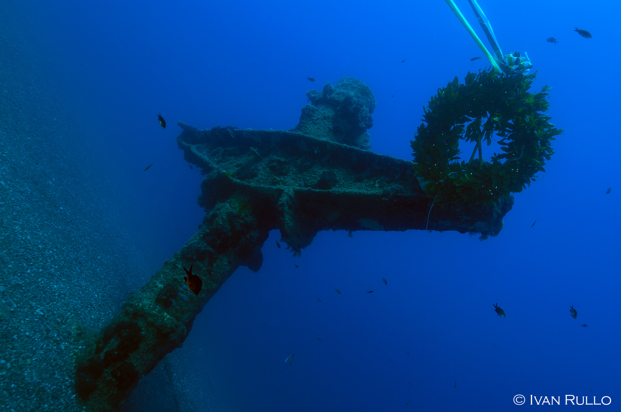 Z IR8959 Relitto Laura Cosulich